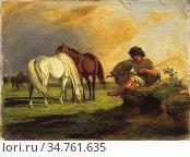 Lotz Károly - Stud Resting - Hungarian School - 19th Century. (2020 год). Редакционное фото, фотограф Artepics / age Fotostock / Фотобанк Лори