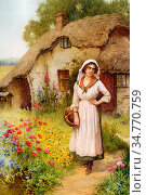 Affleck William - the Village Belle - British School - 19th Century. Стоковое фото, фотограф Artepics / age Fotostock / Фотобанк Лори