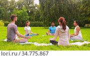 group of people doing yoga at summer park. Стоковое видео, видеограф Syda Productions / Фотобанк Лори