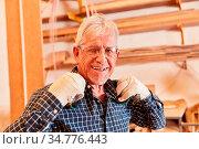 Glücklicher Senior als erfolgreicher Schreiner Meister und Chef in... Стоковое фото, фотограф Zoonar.com/Robert Kneschke / age Fotostock / Фотобанк Лори