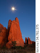 Moonrise over the Fins in Arches National Park, Utah, USA. Novemer. Стоковое фото, фотограф Jeff Vanuga / Nature Picture Library / Фотобанк Лори