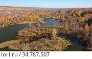 Река Коён под Новосибирском, вид сверху / Aerial video of meanders of the Koen river. Camera moves backwards. Стоковое видео, видеограф Serg Zastavkin / Фотобанк Лори