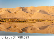 Khongoryn Els sand dunes and reflection in pond, South Gobi desert. Mongolia. Стоковое фото, фотограф Jeff Foott / Nature Picture Library / Фотобанк Лори
