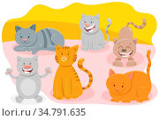 Cartoon Illustration of Funny Cats or Kittens Domestic Animal Characters... Стоковое фото, фотограф Zoonar.com/Igor Zakowski / easy Fotostock / Фотобанк Лори