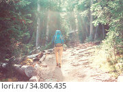 Man hiking bay the trail in the forest. Стоковое фото, фотограф Zoonar.com/Galyna Andrushko / easy Fotostock / Фотобанк Лори