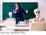Male teacher and skeleton student in the classroom. Стоковое фото, фотограф Zoonar.com/Elnur Amikishiyev / easy Fotostock / Фотобанк Лори