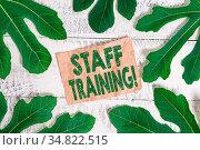 Word writing text Staff Training. Business photo showcasing learn... Стоковое фото, фотограф Zoonar.com/Artur Szczybylo / easy Fotostock / Фотобанк Лори