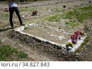 Italy, Milan, Musocco cemetery, camp 87. Стоковое фото, фотограф Yoko Aziz / age Fotostock / Фотобанк Лори