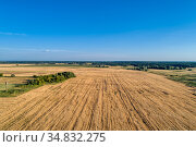 Agricultural fields, countryside. A shot from above. Стоковое фото, фотограф Андрей Радченко / Фотобанк Лори