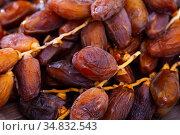 Background of dried dates fruit, tradittional turkish dessert. Стоковое фото, фотограф Яков Филимонов / Фотобанк Лори