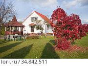 Дом на осеннем дачном участке. Стоковое фото, фотограф Victoria Demidova / Фотобанк Лори