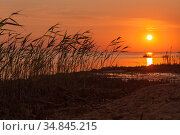 Red sunset over Gulf of Finland, summer evening. Стоковое фото, фотограф EugeneSergeev / Фотобанк Лори