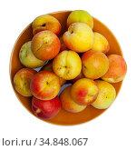 Whole and half fresh apricots. Стоковое фото, фотограф Яков Филимонов / Фотобанк Лори