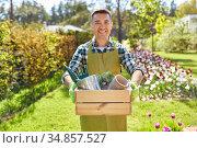 happy man with tools in box at summer garden. Стоковое фото, фотограф Syda Productions / Фотобанк Лори