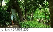 Mature woman walking in the park 4k. Стоковое видео, агентство Wavebreak Media / Фотобанк Лори