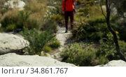 Male hiker walking with backpack in countryside 4k. Стоковое видео, агентство Wavebreak Media / Фотобанк Лори