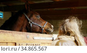 Woman standing near horse in the stable 4k. Стоковое видео, агентство Wavebreak Media / Фотобанк Лори