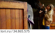 Woman kissing horse in stable 4k. Стоковое видео, агентство Wavebreak Media / Фотобанк Лори