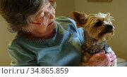 Senior woman holding a dog 4k. Стоковое видео, агентство Wavebreak Media / Фотобанк Лори