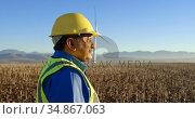Male engineer standing in the wind farm 4k. Стоковое видео, агентство Wavebreak Media / Фотобанк Лори