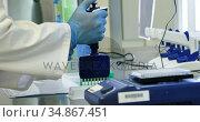 Scientist injecting chemicals in vaccine rack 4k. Стоковое видео, агентство Wavebreak Media / Фотобанк Лори
