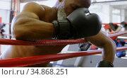 Senior boxer leaning on the boxing ring 4k. Стоковое видео, агентство Wavebreak Media / Фотобанк Лори
