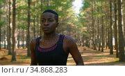 Woman jogging in the forest 4k. Стоковое видео, агентство Wavebreak Media / Фотобанк Лори
