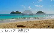 Sea beach with waves 4k. Стоковое видео, агентство Wavebreak Media / Фотобанк Лори