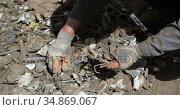 Male worker holding scraps in the junkyard 4k. Стоковое видео, агентство Wavebreak Media / Фотобанк Лори