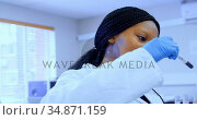 Laboratory technician checking blood sample 4k. Стоковое видео, агентство Wavebreak Media / Фотобанк Лори