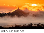 Glastonbury Tor at sunrise surrounded by early morning mist. View from Walton Hill, Somerset, England, UK. June 2019. Стоковое фото, фотограф Guy Edwardes / Nature Picture Library / Фотобанк Лори