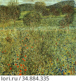Klimt Gustave - Gartenlandschaft - Austrian School - 19th Century. Редакционное фото, фотограф Artepics / age Fotostock / Фотобанк Лори