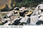 Calame Alexandre - the River Lutschine near Lauterbrunnen - Swiss... Редакционное фото, фотограф Artepics / age Fotostock / Фотобанк Лори