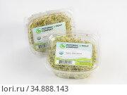 Potomac Sprout Company Organic Alfalfa Sprouts. Стоковое фото, фотограф Edwin Remsberg / age Fotostock / Фотобанк Лори