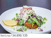 Deep Fried Chicken Breast with Salad. Стоковое фото, фотограф Vichaya Kiatying-Angsulee / easy Fotostock / Фотобанк Лори