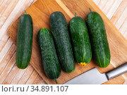 Fresh green juicy cucumbers on wooden table. Стоковое фото, фотограф Яков Филимонов / Фотобанк Лори
