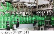 Conveyor line with plastic bottles at the mineral water production plant. Стоковое видео, видеограф Алексей Кузнецов / Фотобанк Лори