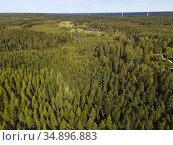 Forest outside the Zinkgruvan. Örebro County. Sweden. Wind power ... Стоковое фото, фотограф Andre Maslennikov / age Fotostock / Фотобанк Лори