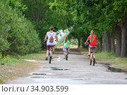 Мама с двумя детьми катаются утром в парке на велосипеде, вид сзади. Стоковое фото, фотограф Иванов Алексей / Фотобанк Лори