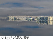 Iceberg reflected in water, Franz Jozef Land, Arctic Russia. July 2019. Стоковое фото, фотограф Sergey  Gorshkov / Nature Picture Library / Фотобанк Лори
