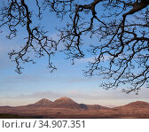 Paps of Jura from Islay, Scotland, UK, March. Стоковое фото, фотограф Niall Benvie / Nature Picture Library / Фотобанк Лори