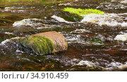 stone covered with moss in river. Стоковое видео, видеограф Syda Productions / Фотобанк Лори