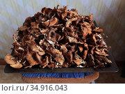 Грибы сушеные на противне. В кухне. Стоковое фото, фотограф Анатолий Матвейчук / Фотобанк Лори
