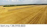 Agricultural land after harvest crop, aerial view at wheat field, farm machinery and green lands. Russia. Стоковое видео, видеограф Кекяляйнен Андрей / Фотобанк Лори