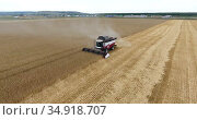 Полет вокруг комбайна, работающем на пшеничном поле при сборе урожая. Редакционное видео, видеограф Кекяляйнен Андрей / Фотобанк Лори