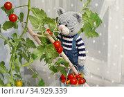 Игрушки. Кот собирает помидоры. Стоковое фото, фотограф Dmitry29 / Фотобанк Лори