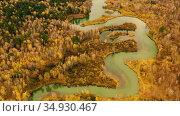 Вид с воздуха на тихую извилистую реку с зеленой водой, желтой осенней травой и листвой. Вид с воздуха. Стоковое видео, видеограф Beerkoff / Фотобанк Лори