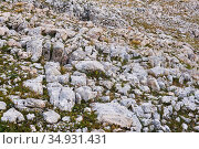 Landscape - a weathering structure in a mountainous area called limestone pavement. Стоковое фото, фотограф Евгений Харитонов / Фотобанк Лори