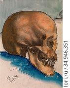 Petrov-Vodkin Kuzma - the Skull - Russian School - 19th Century. Стоковое фото, фотограф Artepics / age Fotostock / Фотобанк Лори