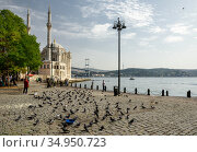 View of the Ottoman Neo-Baroque style Ortakoy Mosque on the Bosphorus, as seen from the Ortakoy pier square (2020). Besiktas district, city of Istanbul, Turkey. Редакционное фото, фотограф Bala-Kate / Фотобанк Лори